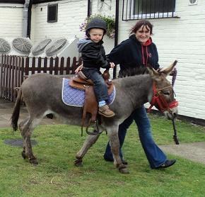 Sarah and Donkey